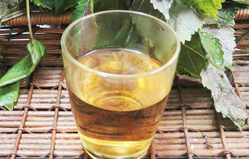 Bài thuốc uống chữa mề đay bằng lá tía tô sẽ mang lại hiệu quả từ bên trong