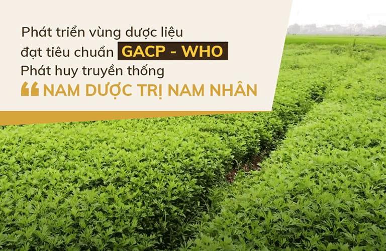 Vườn dược liệu của Đỗ Minh Đường