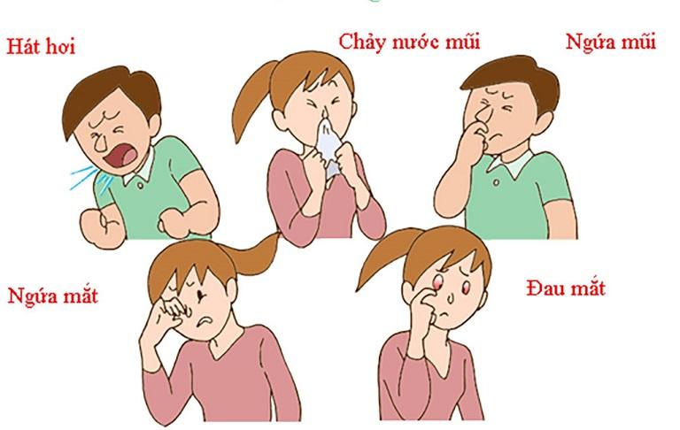 Viêm đường hô hấp do dị ứng thời tiết