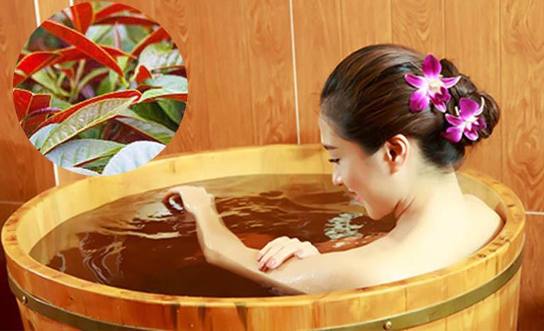 Tắm lá đơn đỏ giúp hỗ trợ điều trị căn bệnh mề đay toàn thân rất tốt